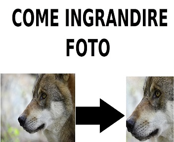come ingrandire foto
